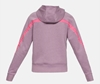 Picture of UNDER ARMOUR ž jopica 1328859-521 TAPED FLEECE